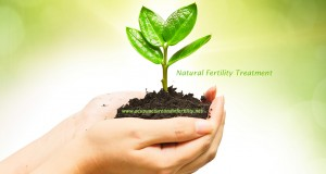 Natural Fertility Treatment